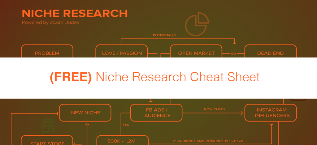 Free 6 figure niche cheat sheet ecom dudes ecommerce meets free 6 figure niche cheat sheet fandeluxe Image collections